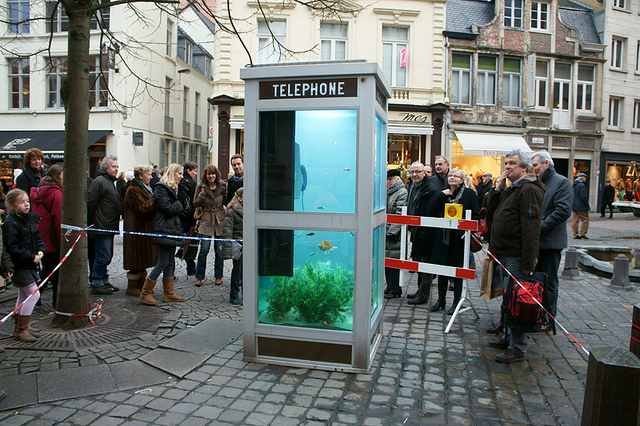 Phone Booths Converted into Outdoor Fish Aquariums